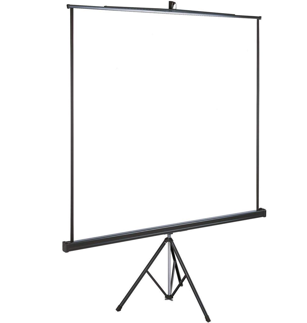 Экран для проктора 2*2